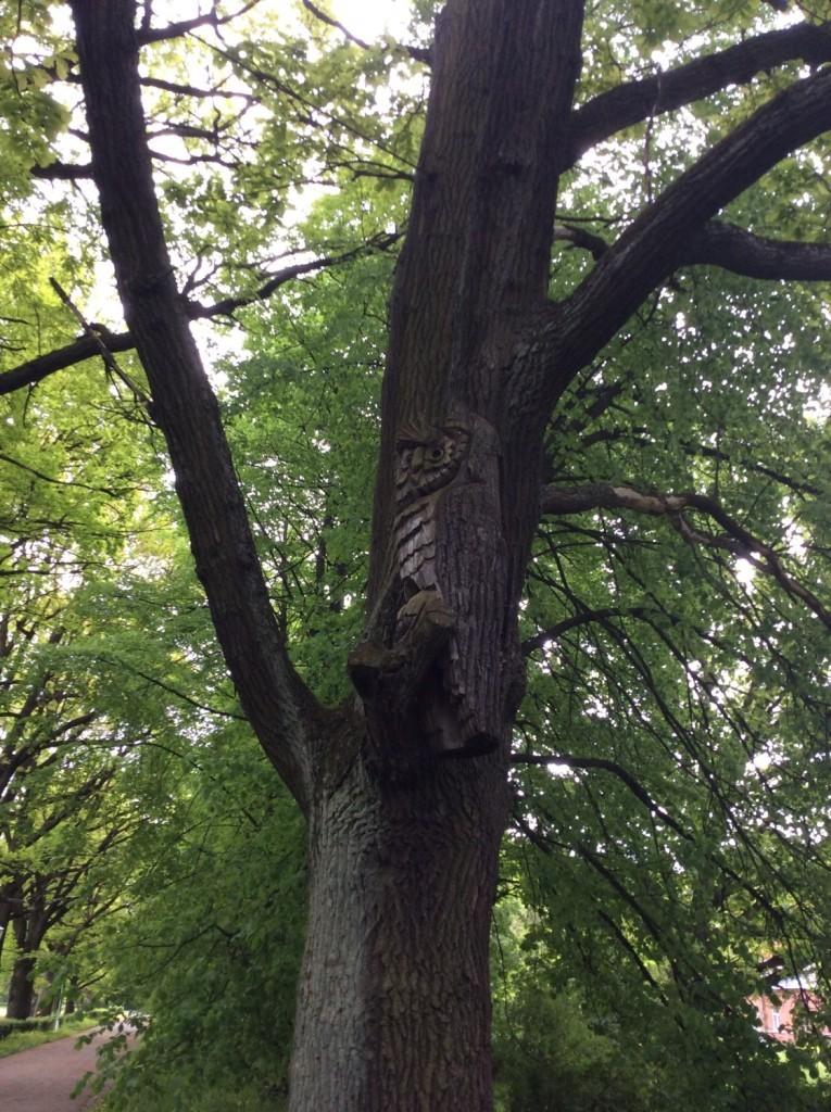 Посетителей Верхнего парка встречает мудрая сова