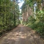 Дорога вдоль Наровы