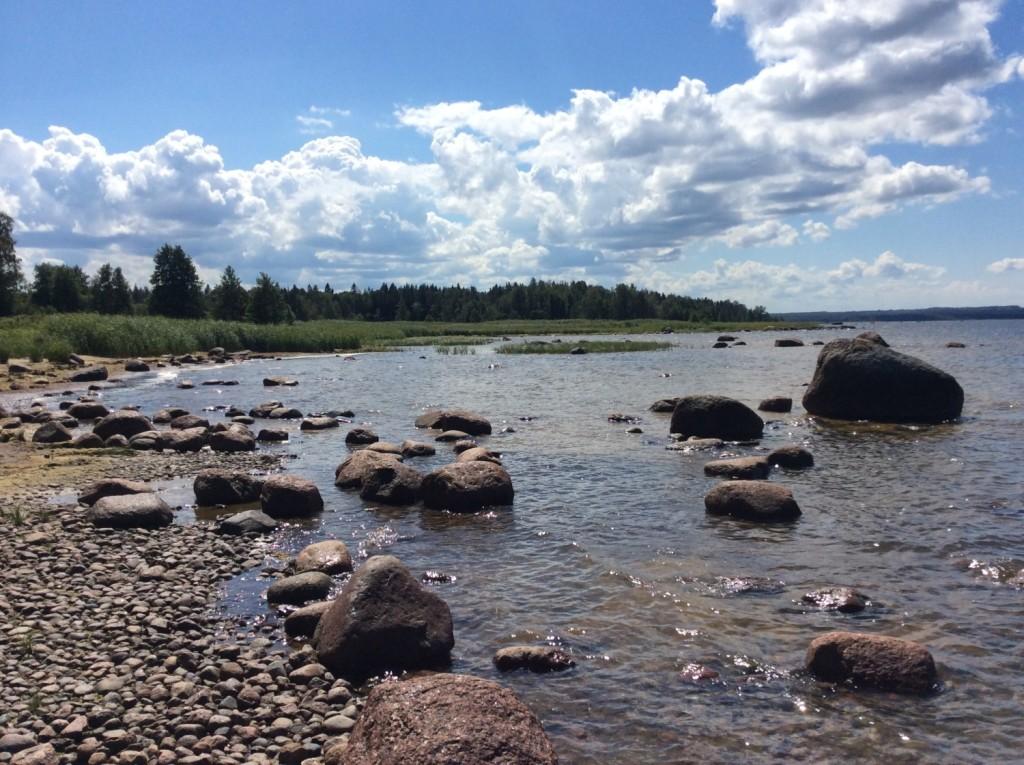 Каменистый берег залива вполне пригоден для рыбаков, но не для пляжников...