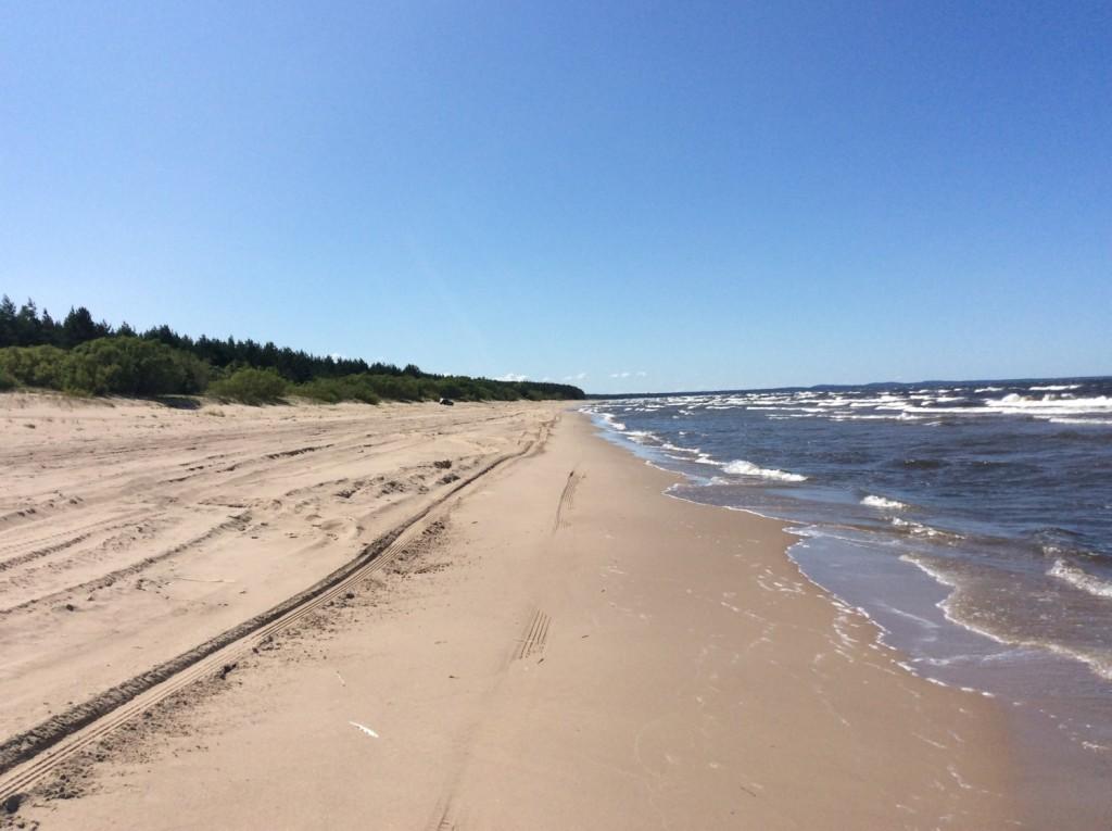 Белые пески раскинулись на несколько километров в заповедной зоне