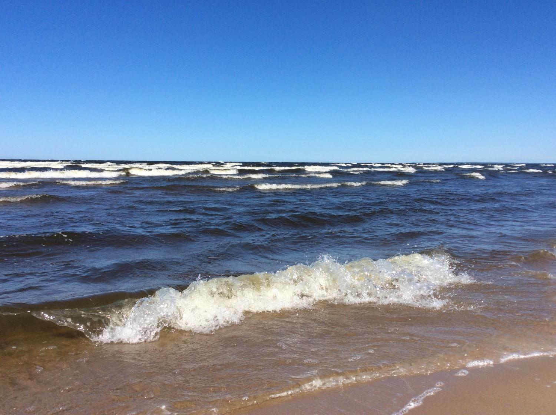 Пляжи южного побережья Финского залива