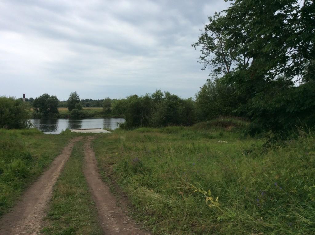 В заброшенном сальском парке еще читаются остатки аллей. Одна из них приводит прямо к берегу реки Луги