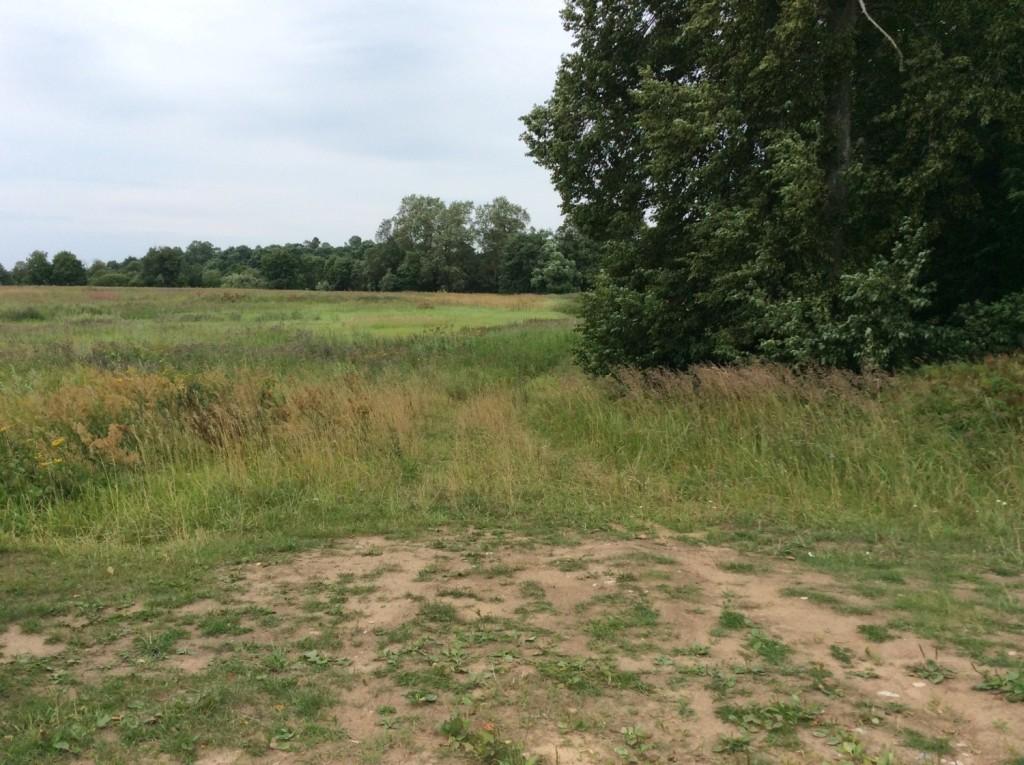 При въезде в деревню полевая дорога, окаймляющая бывший усадебный парк, приводит к ДОТу №10 Кингисеппского укрепрайона