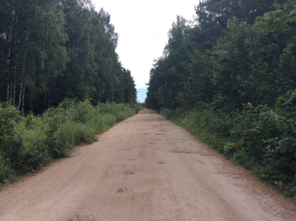 Грунтовая дорога в сторону деревни Новое Куземкино