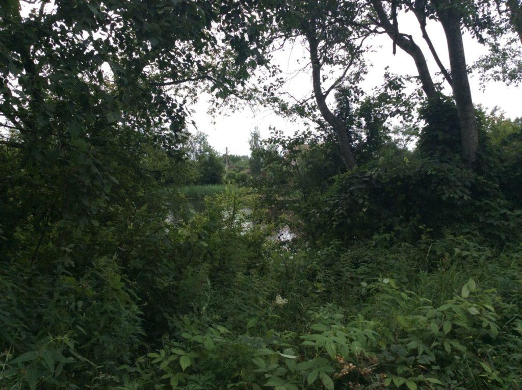 Река Россонь.
