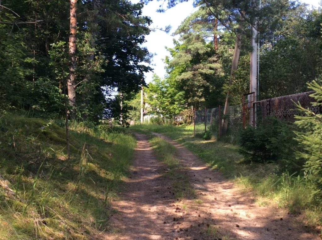 грунтовая дорога Большое Куземкино – Кирьямо