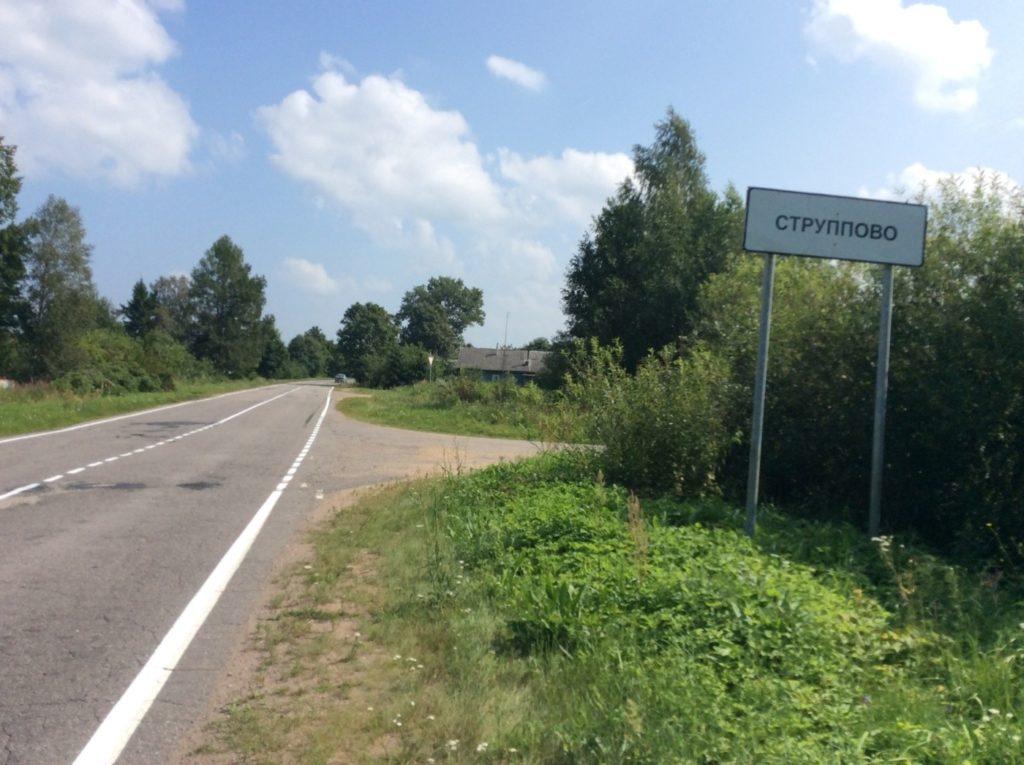 Деревня Струпово. Нижнее Прилужье