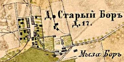 Боровская мыза. Усадьбы Боровская. Ломоносовский район.