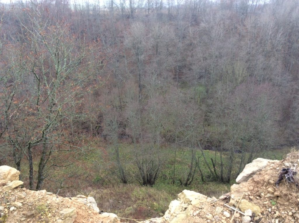 Река Копорка. Каньон. Вид из крепости.