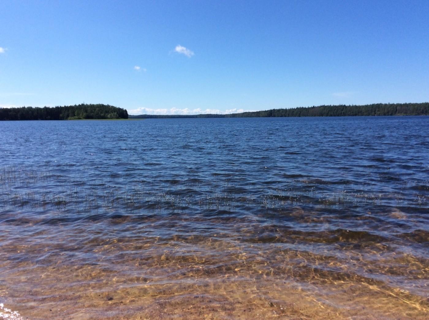 Озеро Белое: природный водоем в сердце полуострова