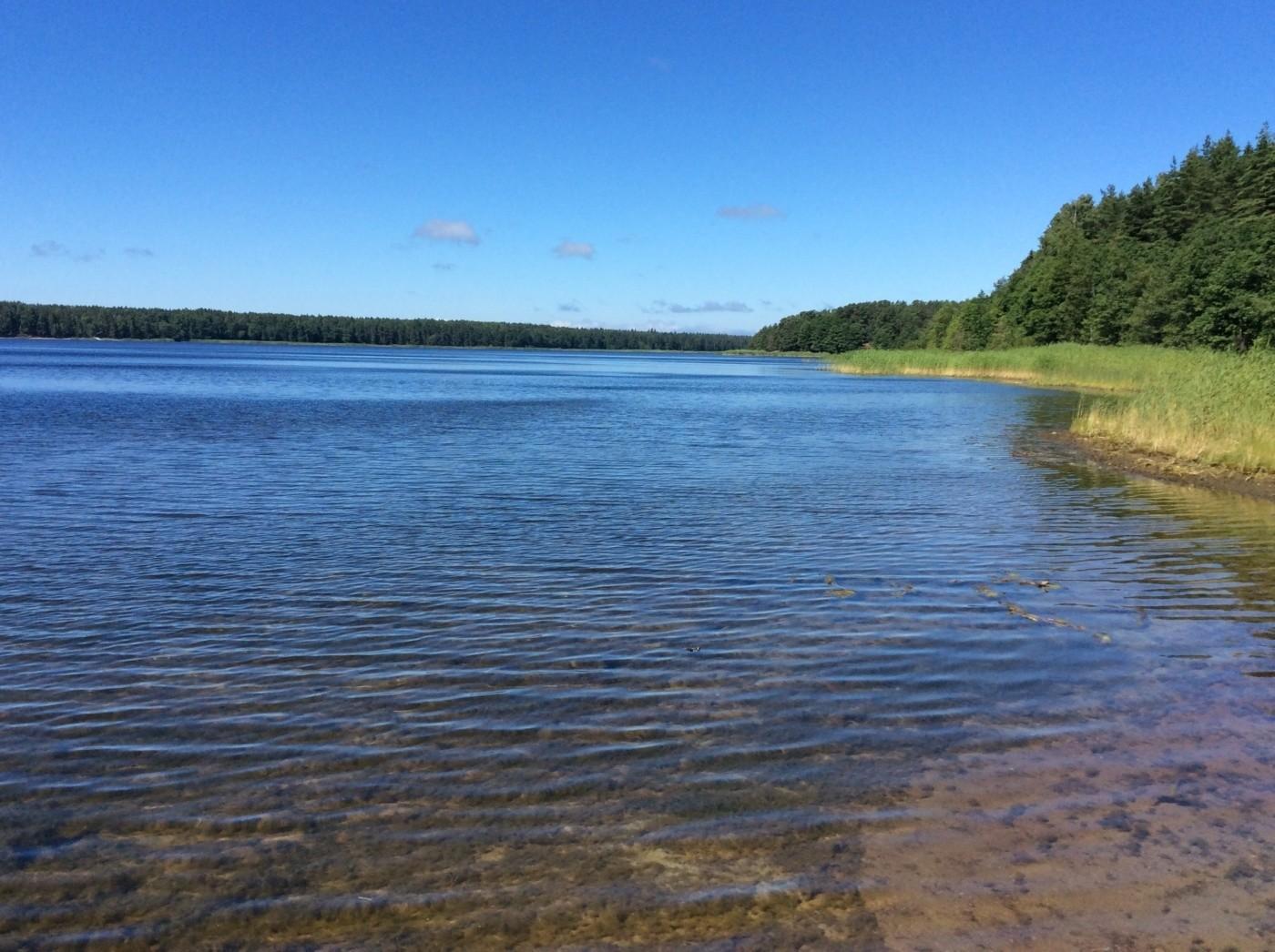 Гидросистема озер Кургальского полуострова. Липовское озеро.