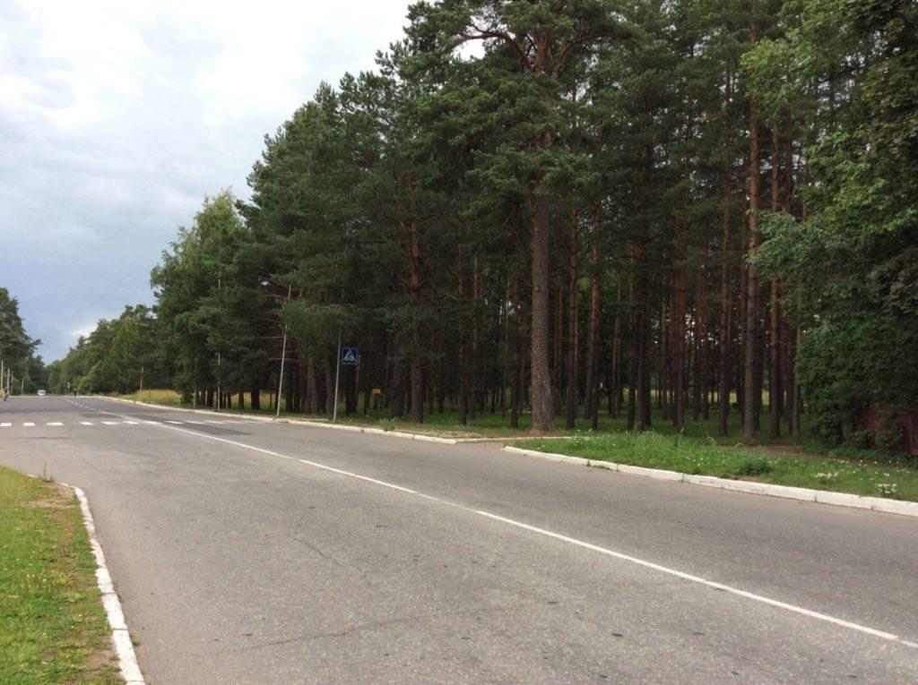 Эстонское мемориальное кладбище. Кингисепп.