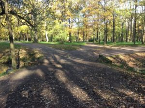 Парк усадьбы Демидова-Эбсворта «Литания» на Петергофской дороге. Красносельский район Санкт-Петербурга.