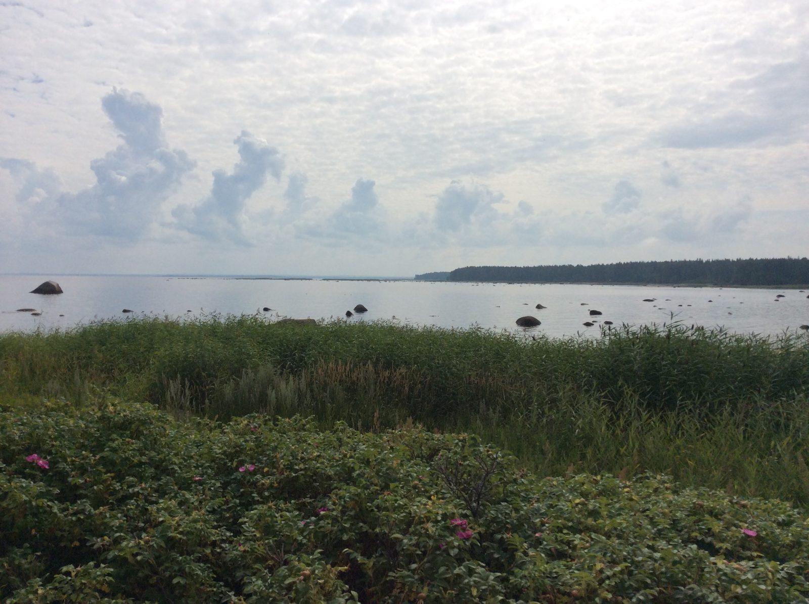 Финский залив. Мыс Липуниэми
