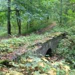 Усадебный парк Штиглица