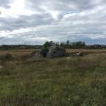 валун на пути в Ореховую Горку. Ивангород