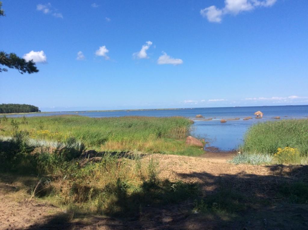 Небольшой песчаный пляж в районе деревни Старое Гарколово