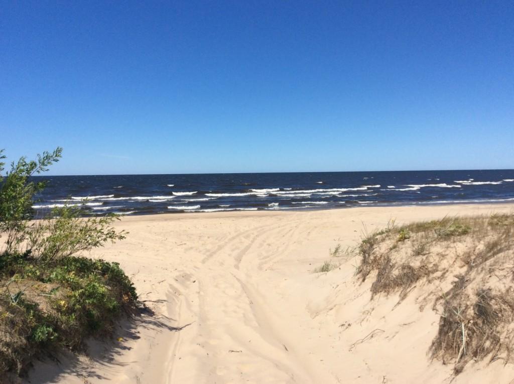 Выезд на пляж Нарвского залива неподалеку от деревни Саркюля