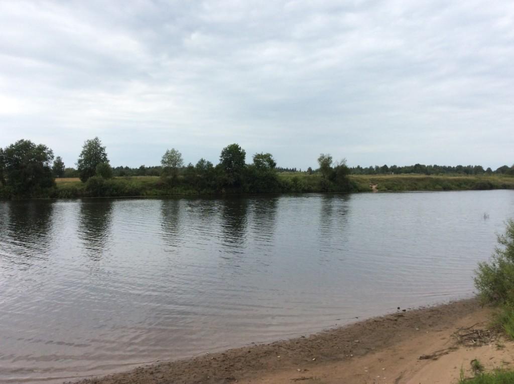 Река Луга в районе Терпигорья. На другом берегу - деревня Кошкино, на территории которой располагались усадьбы Мариенгоф и Блэкенгоф (Новая Сала)
