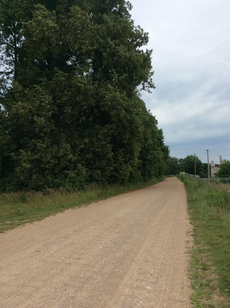 От бывшей трассы A-121 в деревню Сала ведет грунтовая дорога