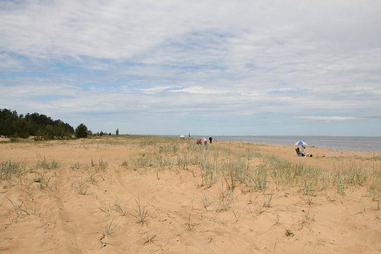 Пляж у Большой Ижоры