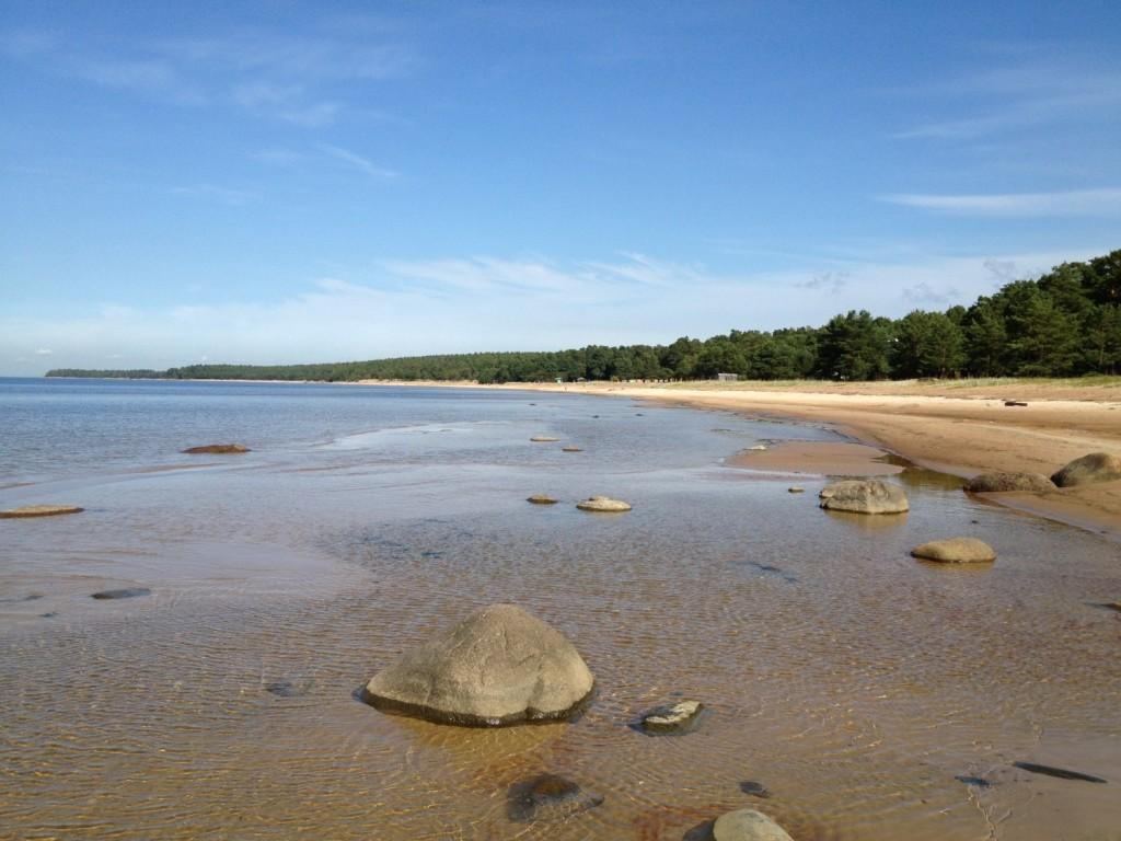 Раскинувшийся на несколько километров Липовский пляж пользуется заслуженной популярностью далеко за пределами Соснового Бора