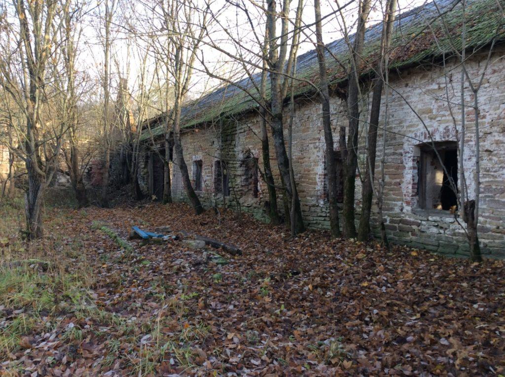 Хозяйственные постройки в усадьбе Гревова