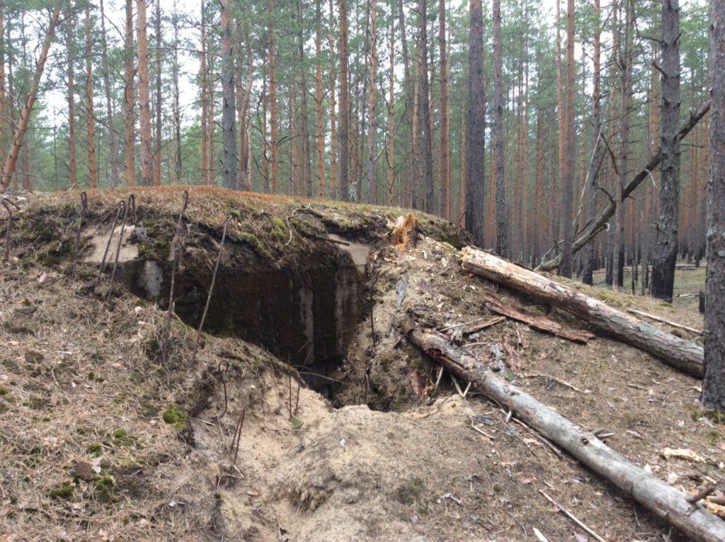 «Пост № 20». Укреппозиция «Усть-Луга». Огневые точки.