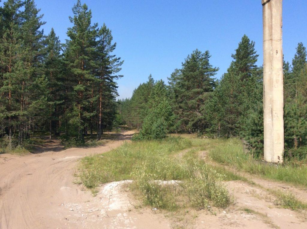 грунтовая дорога Большое Куземкино – пляж