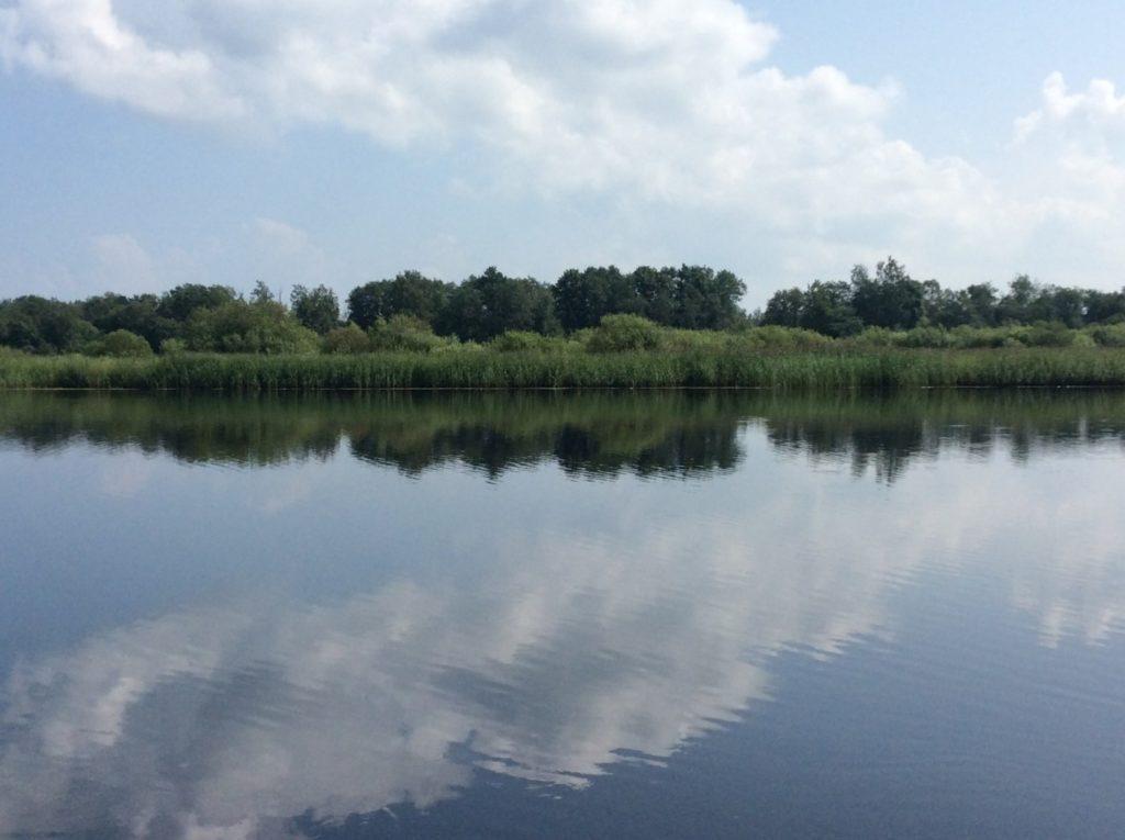 Река Луга. Нижнее Прилужье