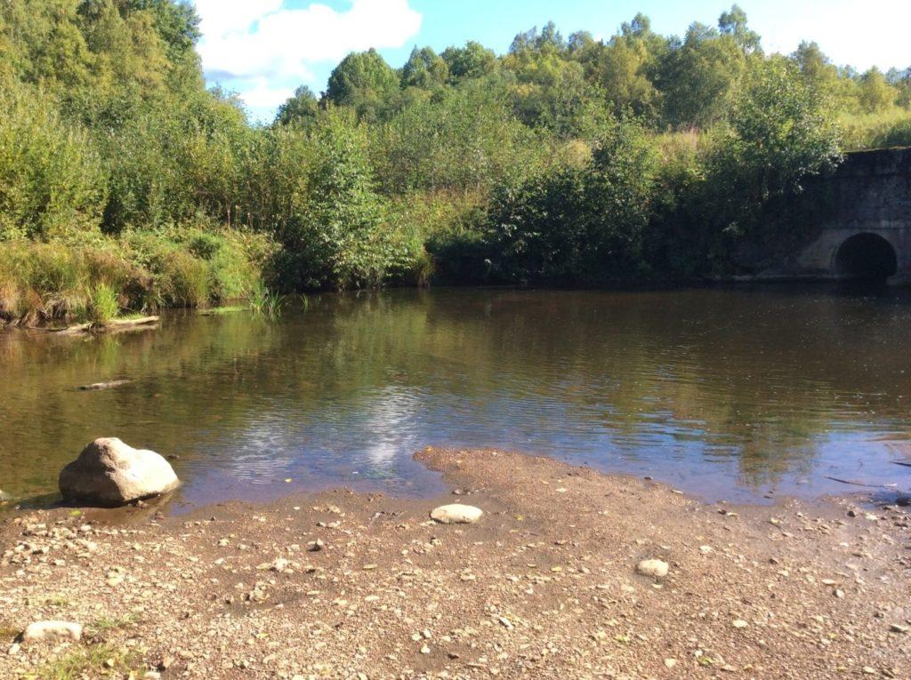 Река Воронка.