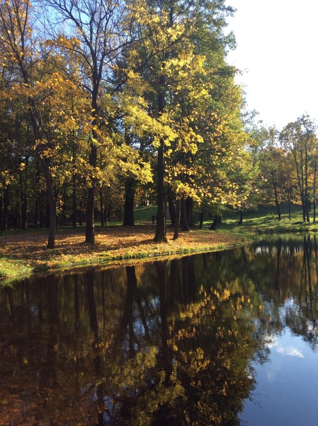 красносельский район парки спб фото крутятся