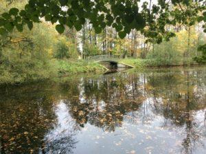Парк усадьбы Павлино Ласунского-Виельгорских