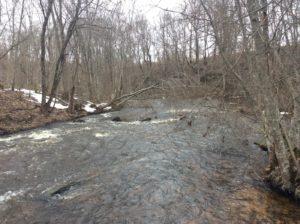 Течение реки Сума ниже моста.