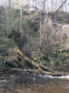 Каньон реки Сума