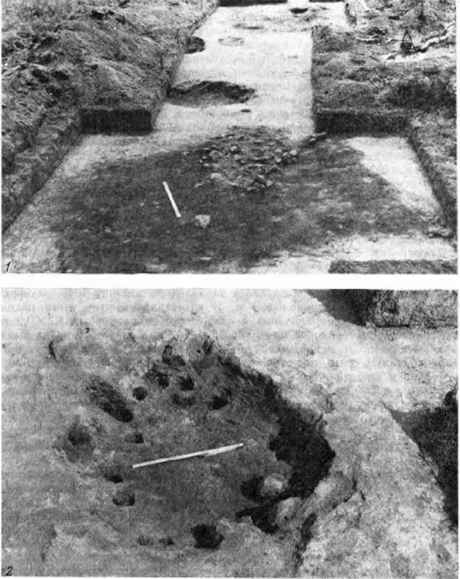Кайболовское городище. Городище на реке Сума. Археологический памятник