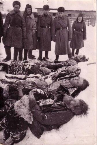Расстрелянные фашистами мирные жители деревни Ямсковицы