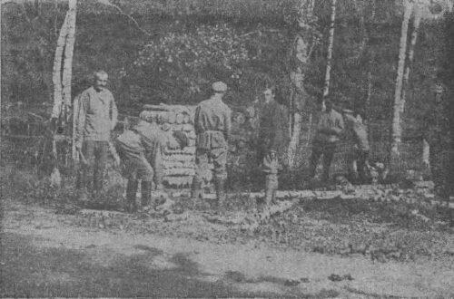 Пятые Петергофские пехотные курсы. Военный Петергоф